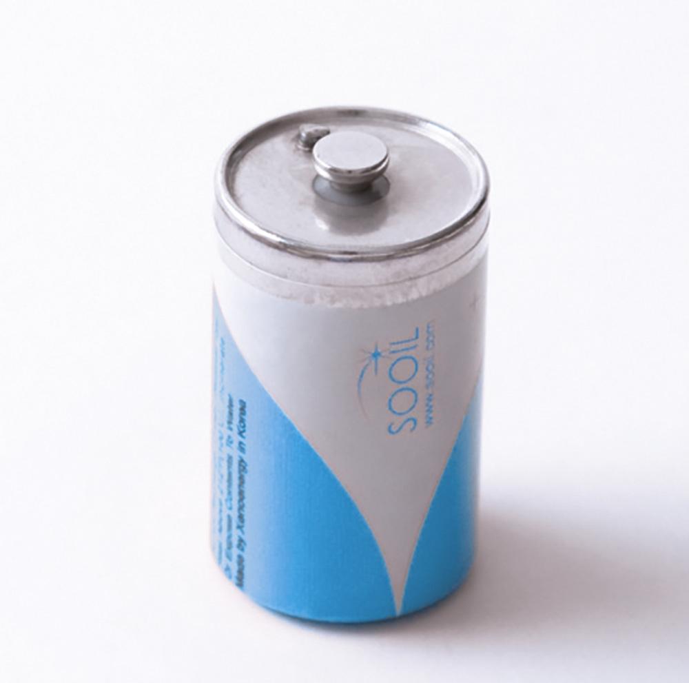 Dana Diabecare Batterie Lithium 3,6V